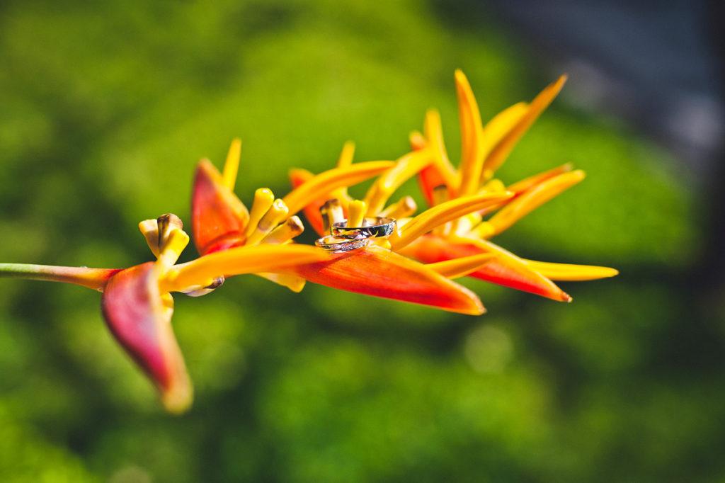 Фотограф на Бали